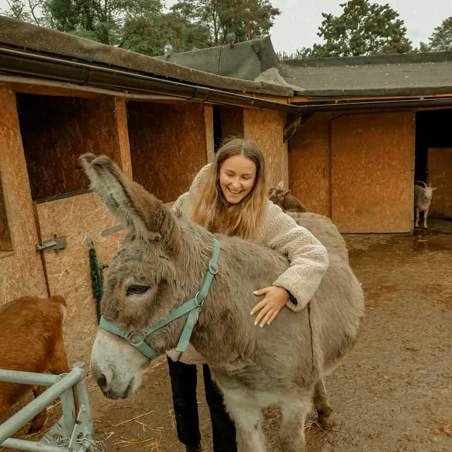 Praktikantin Jenny mit Eselin Mary auf dem Gnadenhof in Worms
