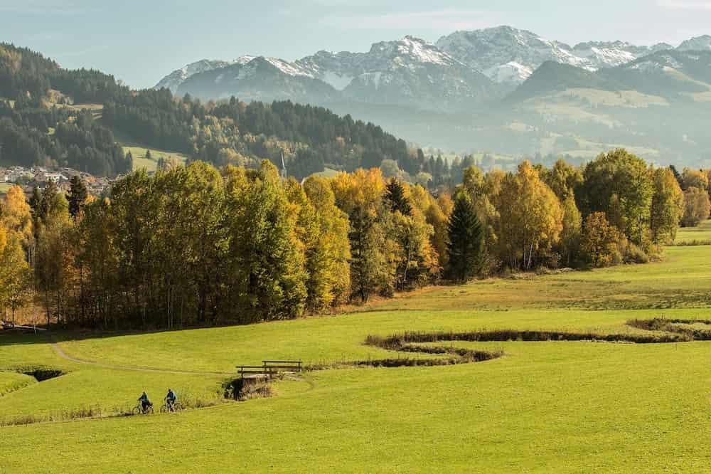 Allgäuer Wiesen mit Bergen im Hintergrund